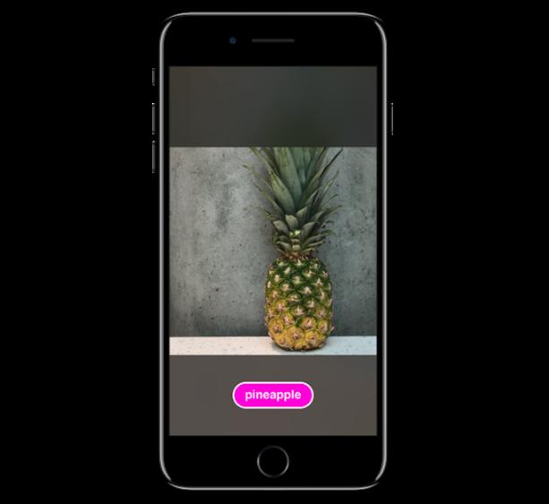 図3 - iOS上で果物を分類するカスタム視覚モデル