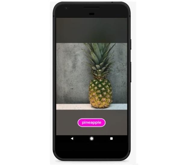 図4 - Android上で果物を分類するカスタム視覚モデル